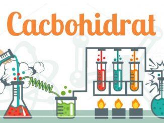cacbonhidrat