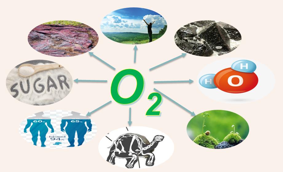 oxi-o2 1